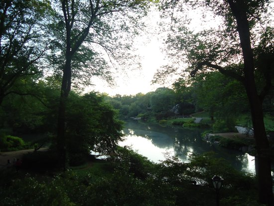 Central Park: Breathtaking beauty in the early calm.