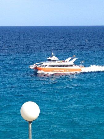 Complejo Calas de Mallorca: Glass bottom boats