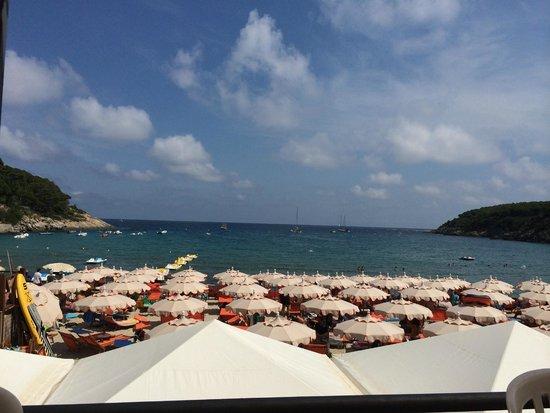 Hotel Villa Wanda: Una delle bellissime spiagge facilmente raggiungibili.