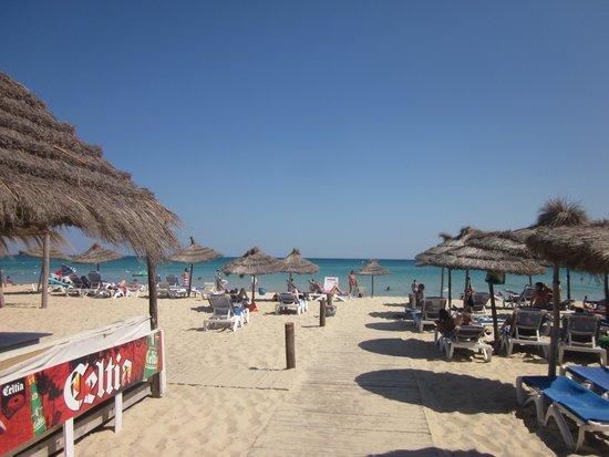 Hammamet Garden Resort & Spa: Spiaggia