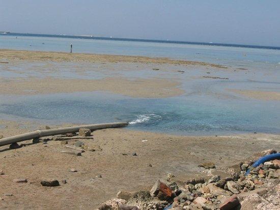 Stella Di Mare Beach Resort & Spa Makadi Bay: spiaggia