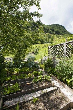Villa Missian : garden