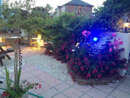 Vernon Guesthouse: Garden