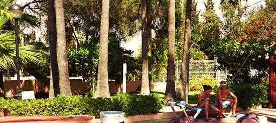 Globales Palmanova: Hotel grounds