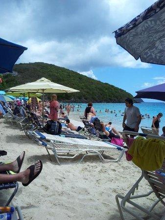 Coki Point Beach : beachside on Coki Beach, St. Thomas