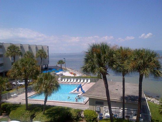 Sailport Waterfront Suites : Pool