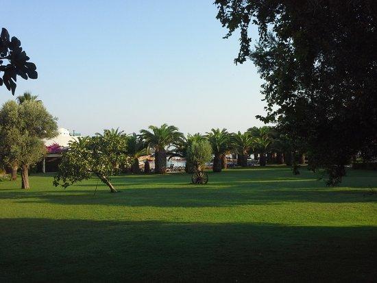 Hotel Samara: les jardins devant le resto