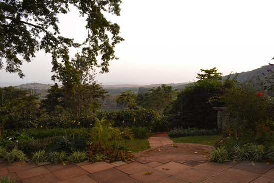 Gibb's Farm : More of the view
