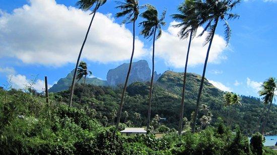 Bora Bora Photo Lagoon : Photo motives wherever you look
