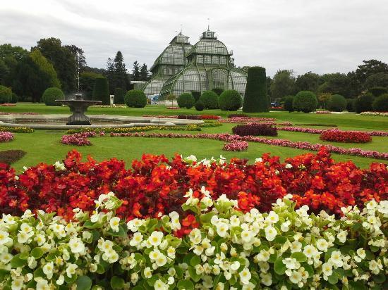 Palacio de Schönbrunn: Photo of Schonbrunn Palace taken with TripAdvisor City Guides