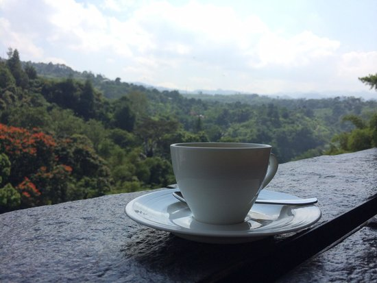 Padma Hotel Bandung: A cup of coffee in the lobby with a beautiful view.
