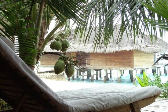 Kuramathi Island Resort : photo 2
