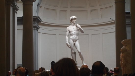 Gallerie dell'Accademia : The Statue of David