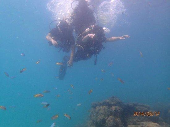 Radhanagar Beach: Me doing scuba diving with friend