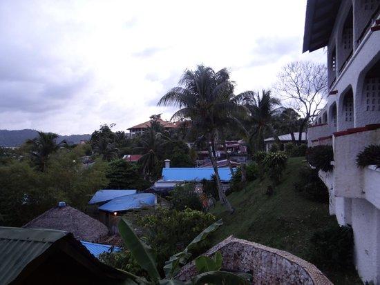 Hotel Villa Caribe : Garden