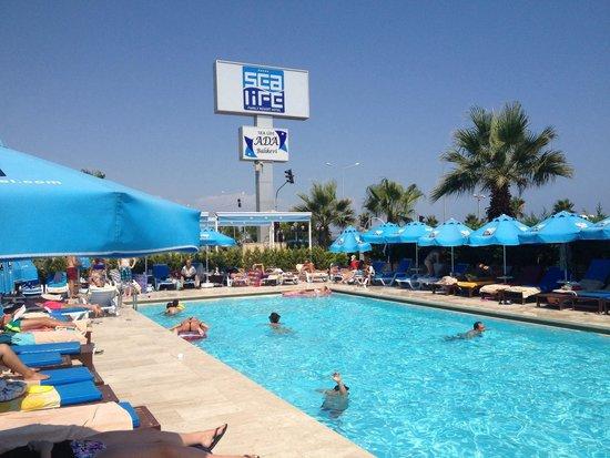 Sealife Family Resort: Quieter pool