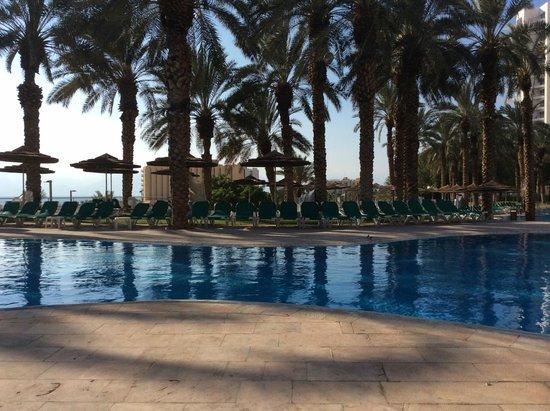 David Dead Sea Resort & Spa : Pool at 8:00 AM