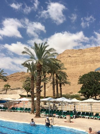 David Dead Sea Resort & Spa : Pool