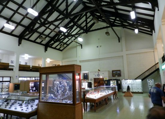 MBMG Mineral Museum : Small but wonderful. A gem of a museum!