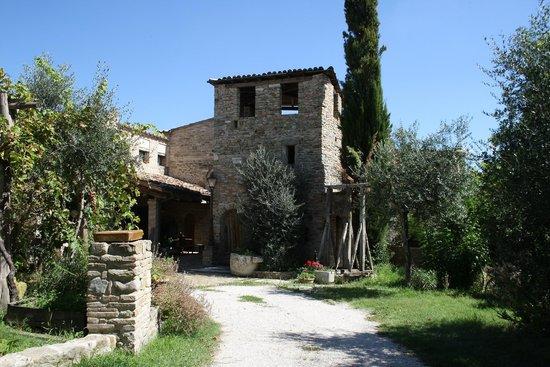Castrum Sagliani