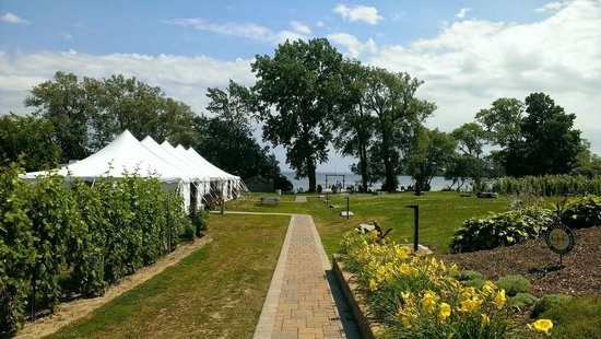 Waupoos Estates Winery: View of grounds from restaurant