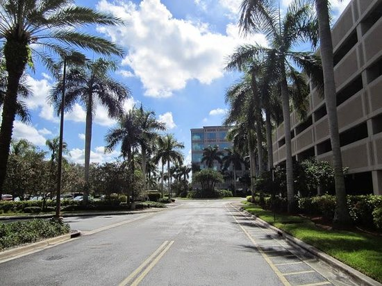 Doubletree by Hilton Sunrise - Sawgrass Mills: Alrededores