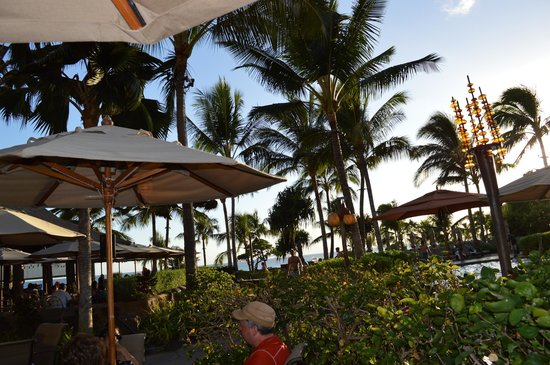 hook up sites oahu There are lots of fun things to do in honolulu, including soaking up sun on the  amazing beaches of oahu island, taking a stroll through a scenic.