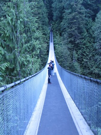 Comfort Inn and Suites North Vancouver: Suspension Bridge