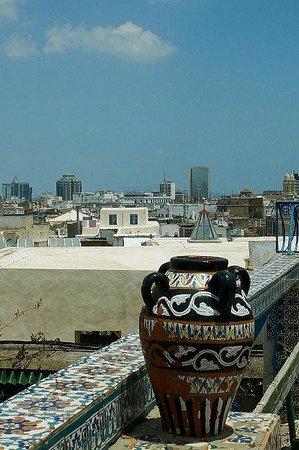 Medina von Tunis: Medina di Tunisi: Tunisia: vista dall'alto