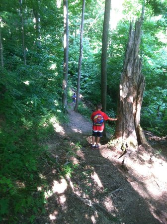 Mount Gilead, OH: Hiking the Trails