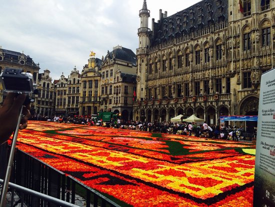 NH Brussels Bloom: Town flower show