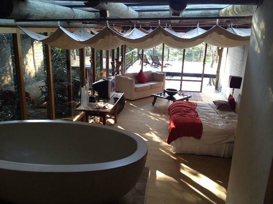 Trogon House and Forest Spa : Our luxury room