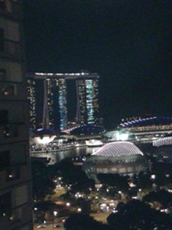 Fairmont Singapore: view