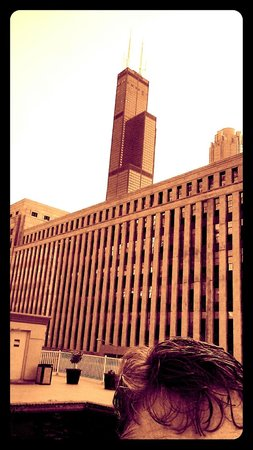 Holiday Inn Chicago Downtown: Willis Tower overlooks rooftop pool