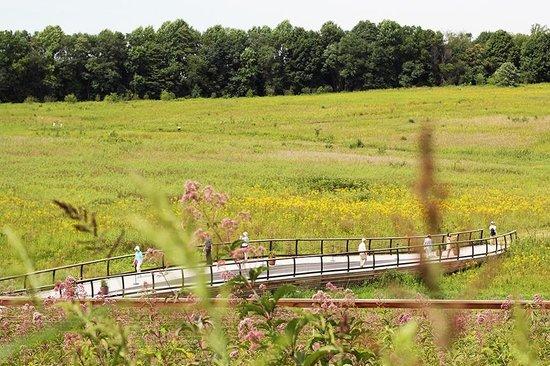 Longwood Gardens : Longwood Garden Meadow