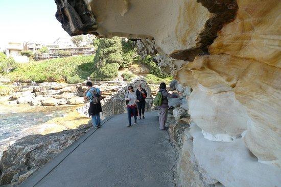 Bondi to Coogee Beach Coastal Walk: natural sculpturing along the walk