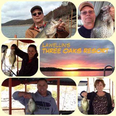 Three Oaks Resort On Lake Norfork : Great fall fishing!
