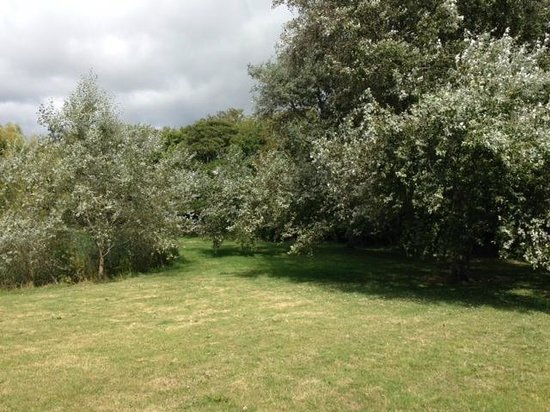 Shorefield Country Park: Grounds