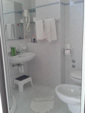 Hotel Niagara: bagno camera