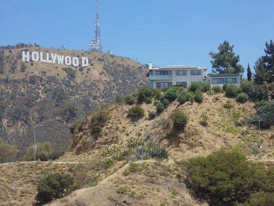 Hollywood Hills : Hollywood vista