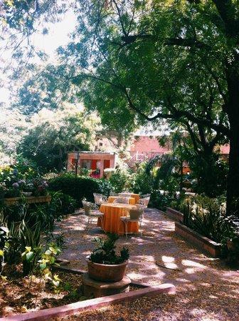 Devi Bhawan: Spring time dining