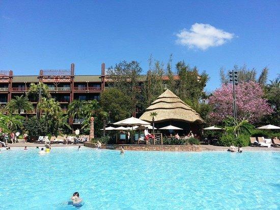 Disney's Animal Kingdom Lodge: Pool area....