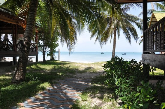 Koh Phangan Dreamland Resort : Beach View