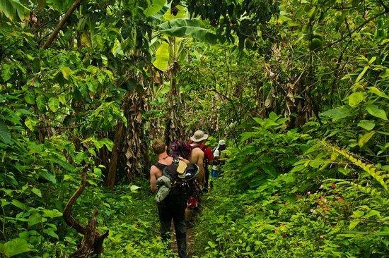 Conde Travel: Trekking Inca Jungle