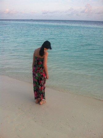 Lily Beach Resort & Spa: BEACH