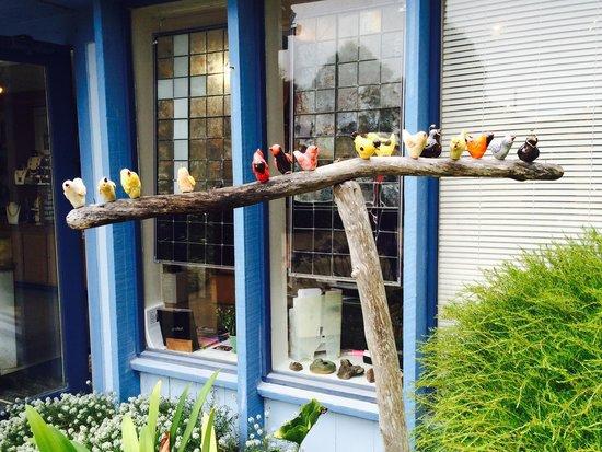 Mendocino Art Center: Watch the birdies