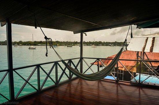 Bocas Inn: Hammocks on the Upper Balcony