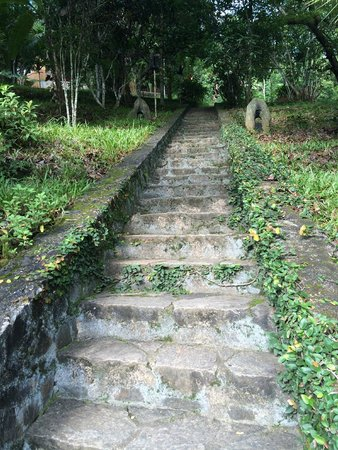 Kandy Samadhi Centre: Stairs to room