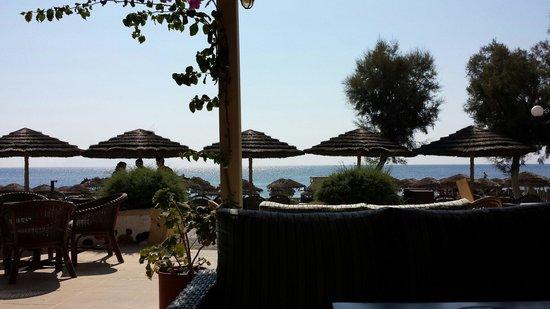 Nostos Hotel: Dal bar