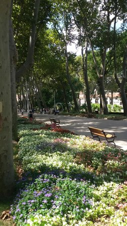 Gulhane Park: stroll through the park
